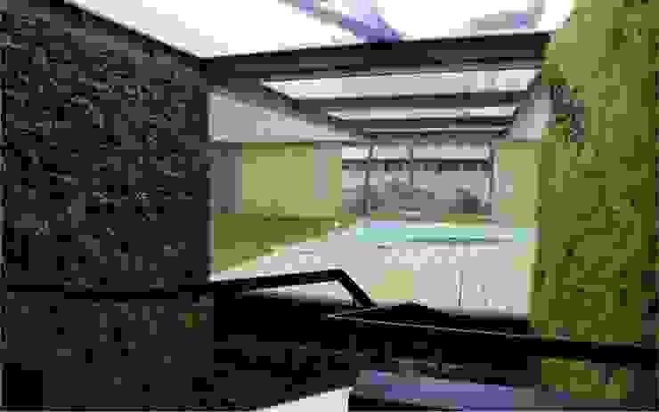 LC Vertical Gardens Garden Plants & flowers