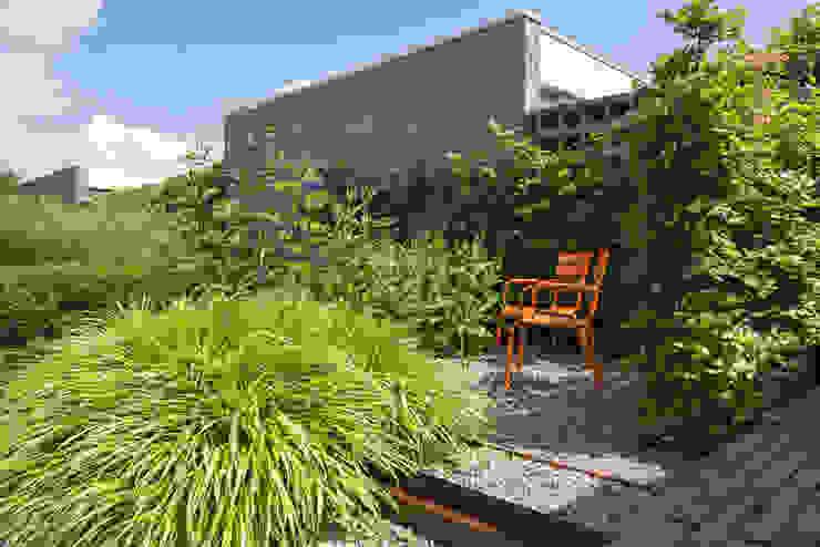 Natuurlijke kleine tuin Sleeuwijk - Tuin van het jaar 2018 Eclectische tuinen van De Rooy Hoveniers Eclectisch