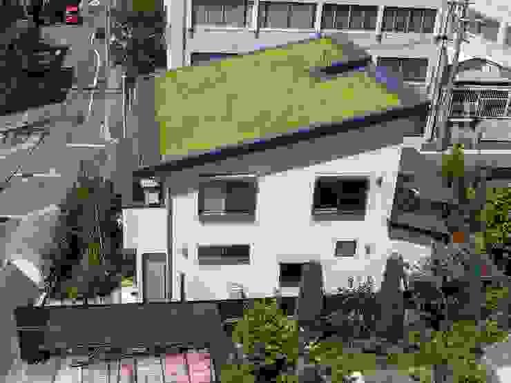 東面外観と高麗芝の草屋根 オリジナルな 家 の homify オリジナル セラミック