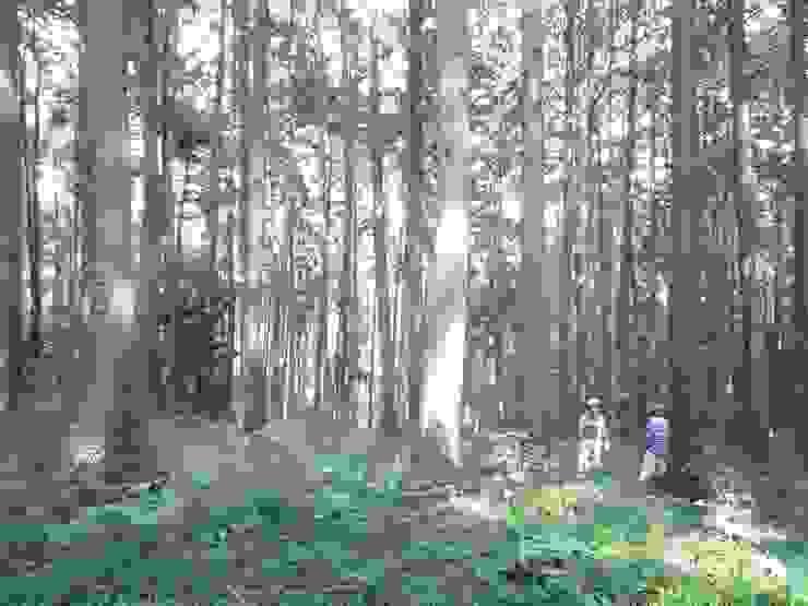 埼玉県日高市~Sさんの家 モダンデザインの テラス の kijima-k-koubou モダン
