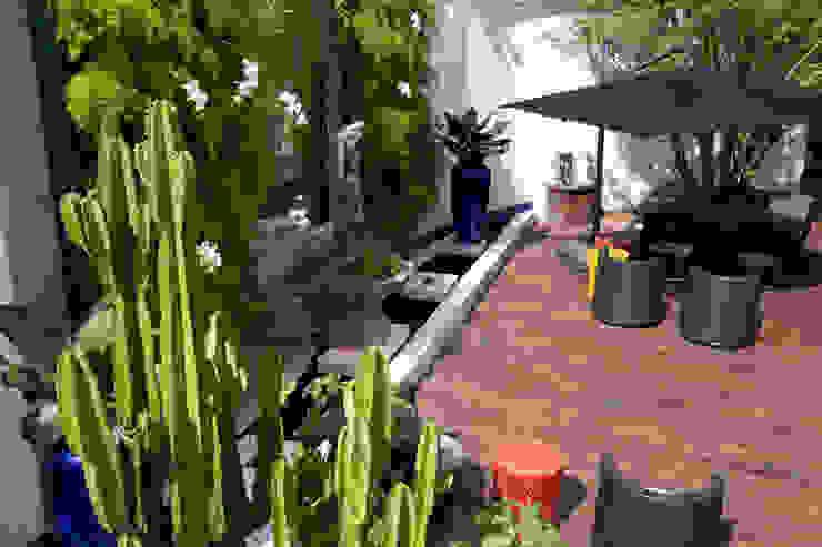 모던스타일 정원 by Sandra Sanches Arq e Design de Interiores 모던