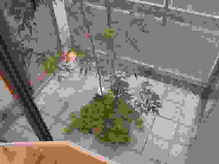 中庭 オリジナルデザインの テラス の Unico design一級建築士事務所 オリジナル