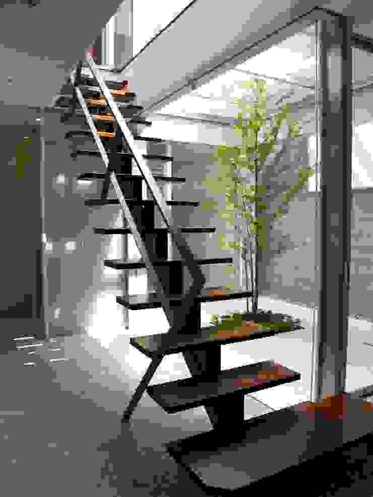 IF階段室から中庭を見る:       古津真一 翔設計工房一級建築士事務所が手掛けた現代のです。,モダン 木 木目調
