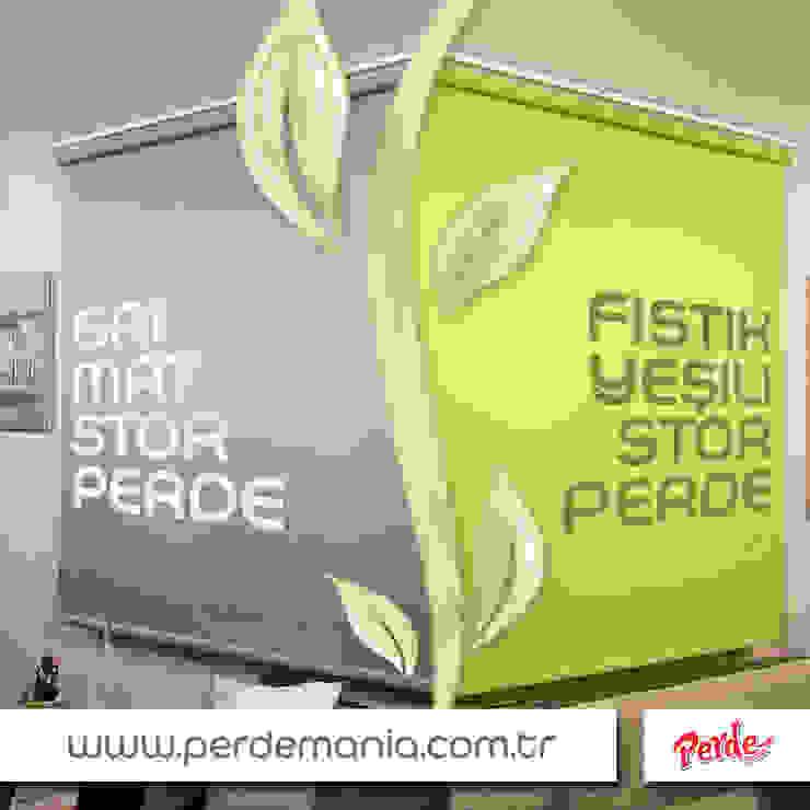 Perdemania – Fıstık Yeşili Stor Perde: modern tarz , Modern