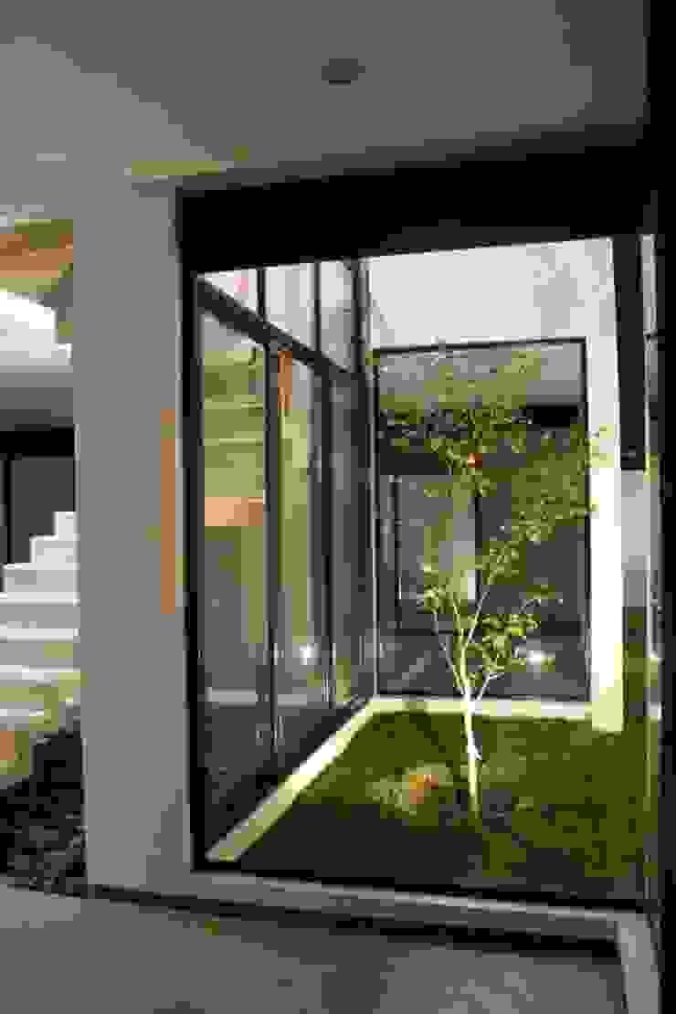 CASA VI Jardines modernos de MORO TALLER DE ARQUITECTURA Moderno