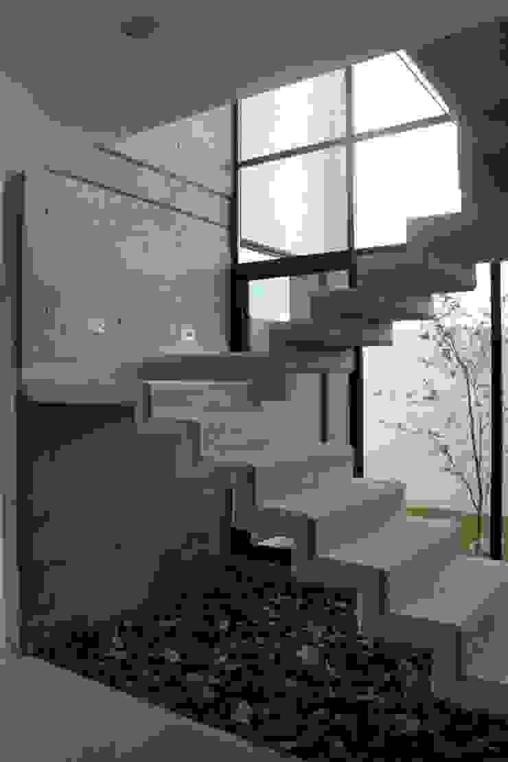CASA VI Pasillos, vestíbulos y escaleras modernos de MORO TALLER DE ARQUITECTURA Moderno