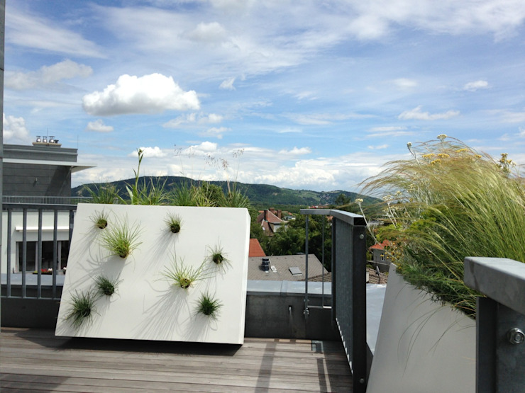 Modern style balcony, porch & terrace by neubert und fuchs_gartenabteilung Modern Synthetic Brown
