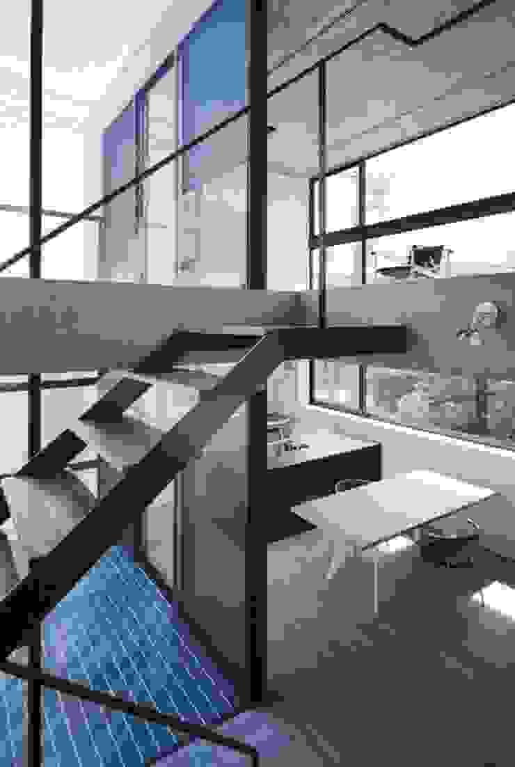 Proyectos y Espacios Pasillos, vestíbulos y escaleras de estilo moderno de MIM Arquitectos Moderno