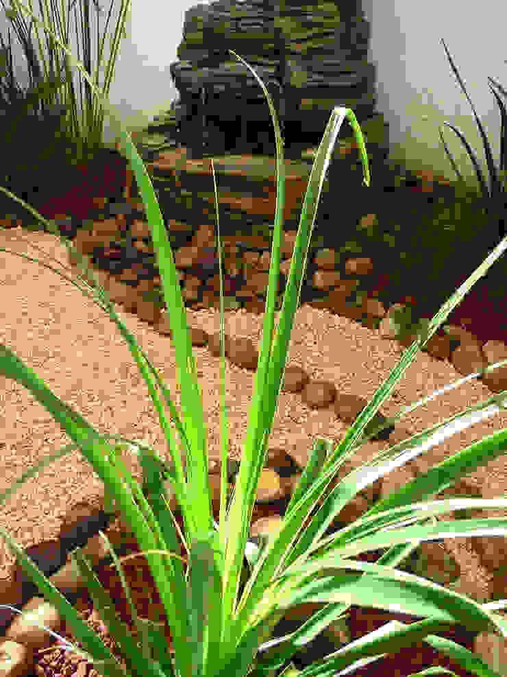 Fuente sobre pierdas de rio de Zen Ambient