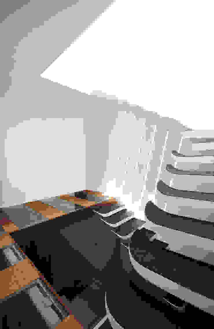 S-House Modern corridor, hallway & stairs by SDeG Modern