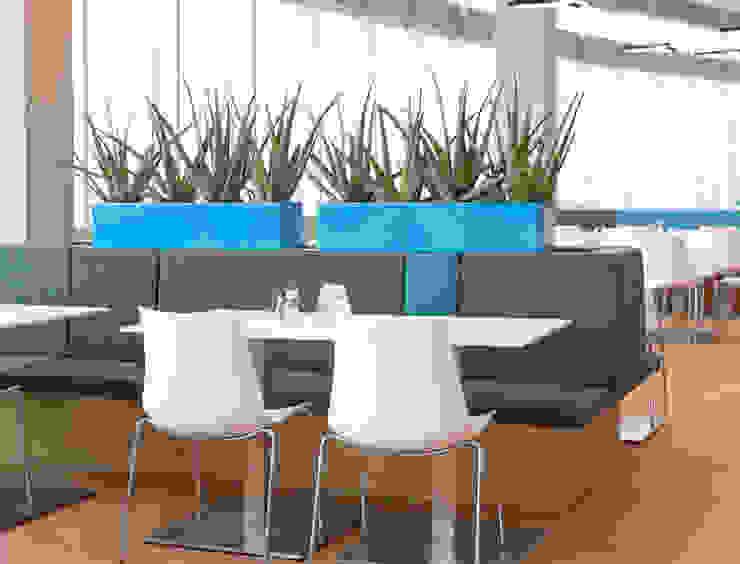 BAUMHAUS GmbH Raumbegrünung Pflanzenpflege Edificios de Oficinas Sintético