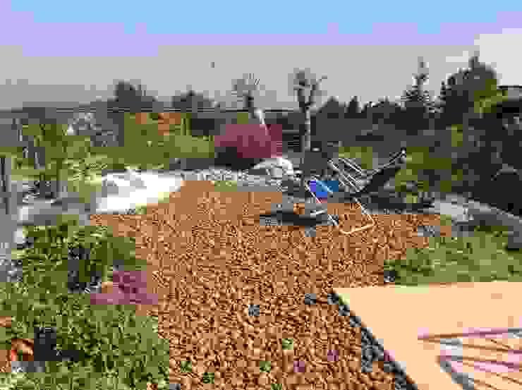 Jardines de estilo mediterráneo de I Giardini di Anna Mediterráneo