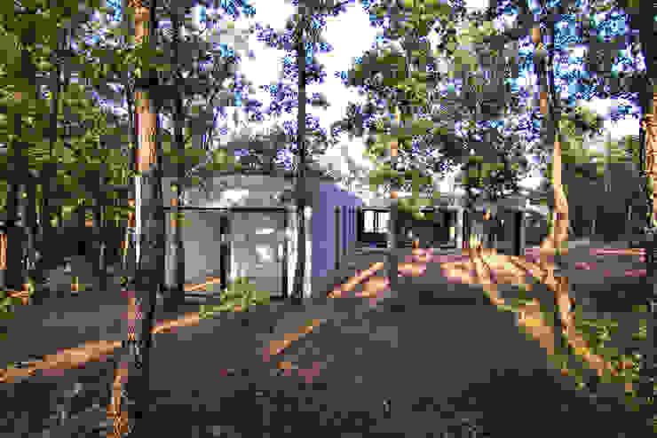 Vista des del patio Casas minimalistas de Comas-Pont Arquitectes slp Minimalista
