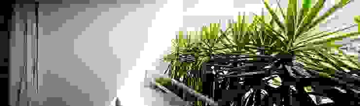 Lote estreito casa espaçosa. Varandas, alpendres e terraços modernos por Magno Moreira Arquitetura Moderno