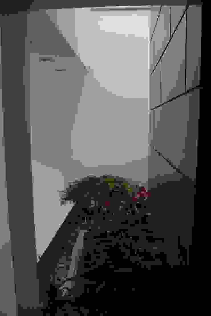 Casa el Hatillo Jardines de estilo minimalista de FergoStudio Minimalista