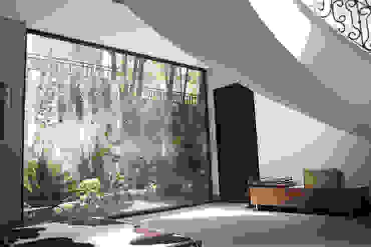 Modern corridor, hallway & stairs by Windlock - soluciones sustentables Modern
