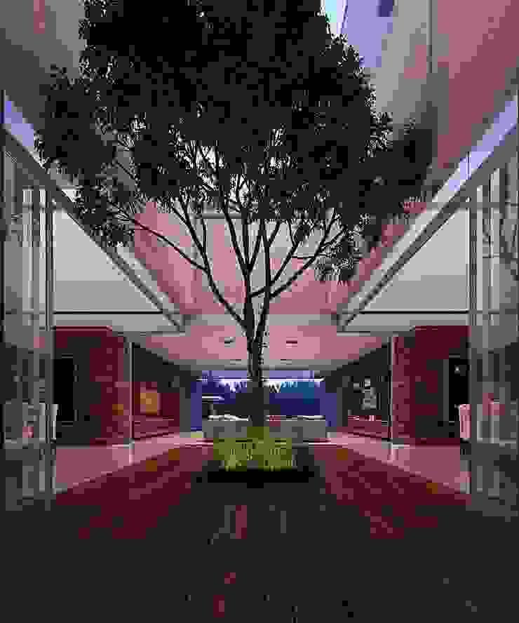 Casa HH Pasillos, vestíbulos y escaleras modernos de TNGNT arquitectos Moderno