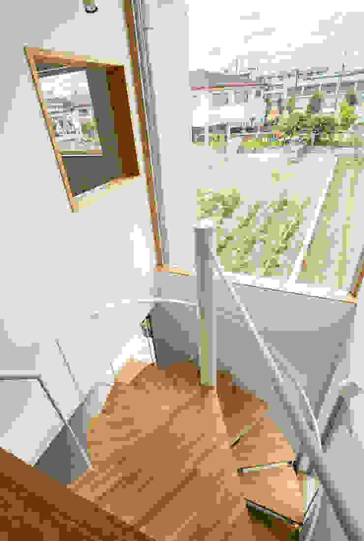 長尾元町の家 モダンスタイルの 玄関&廊下&階段 の 藤森大作建築設計事務所 モダン
