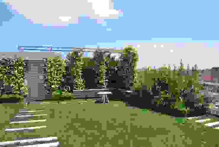 modern  by Febo Garden landscape designers, Modern