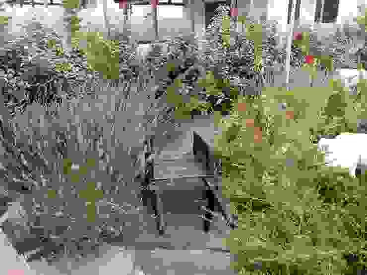 Otro jardín en la montaña El creador de paisajes Jardines de estilo rústico