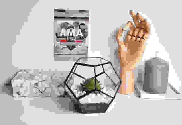 Terrario Dodecaedro pequeño:  de estilo industrial de ZetaGlass, Industrial Vidrio
