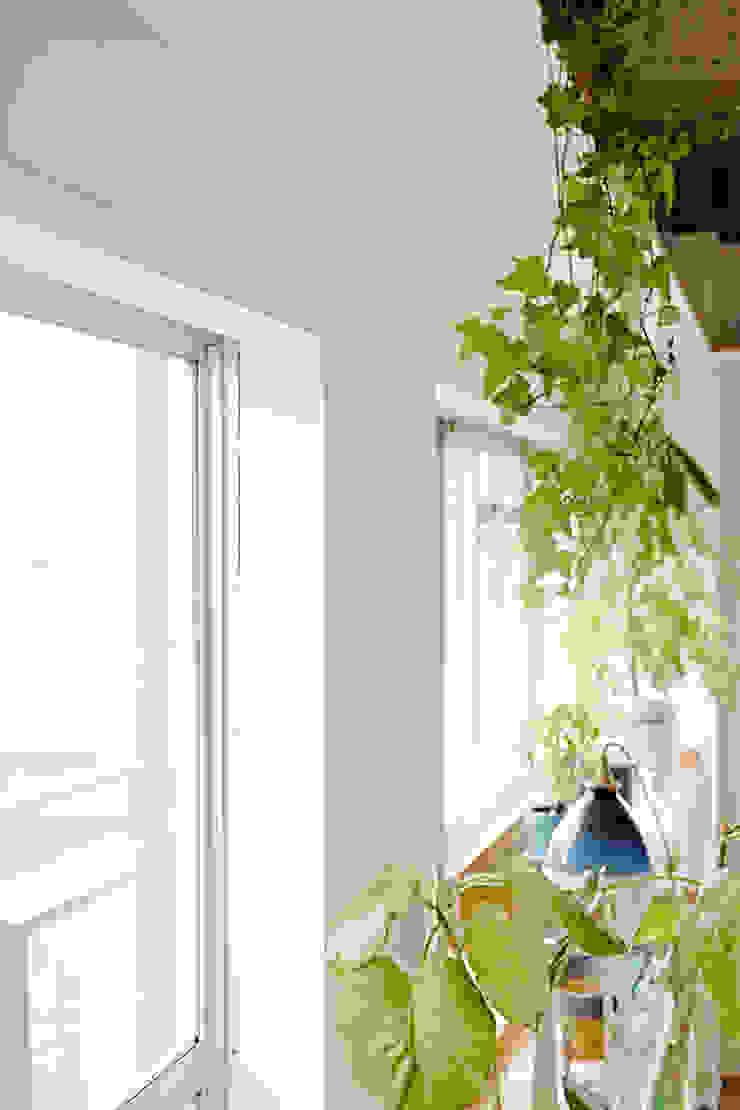 .8 HOUSE インダストリアルな 窓&ドア の .8 / TENHACHI インダストリアル