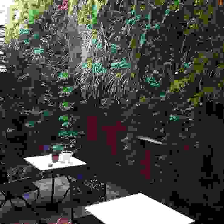 modern  oleh jardines verticales, Modern