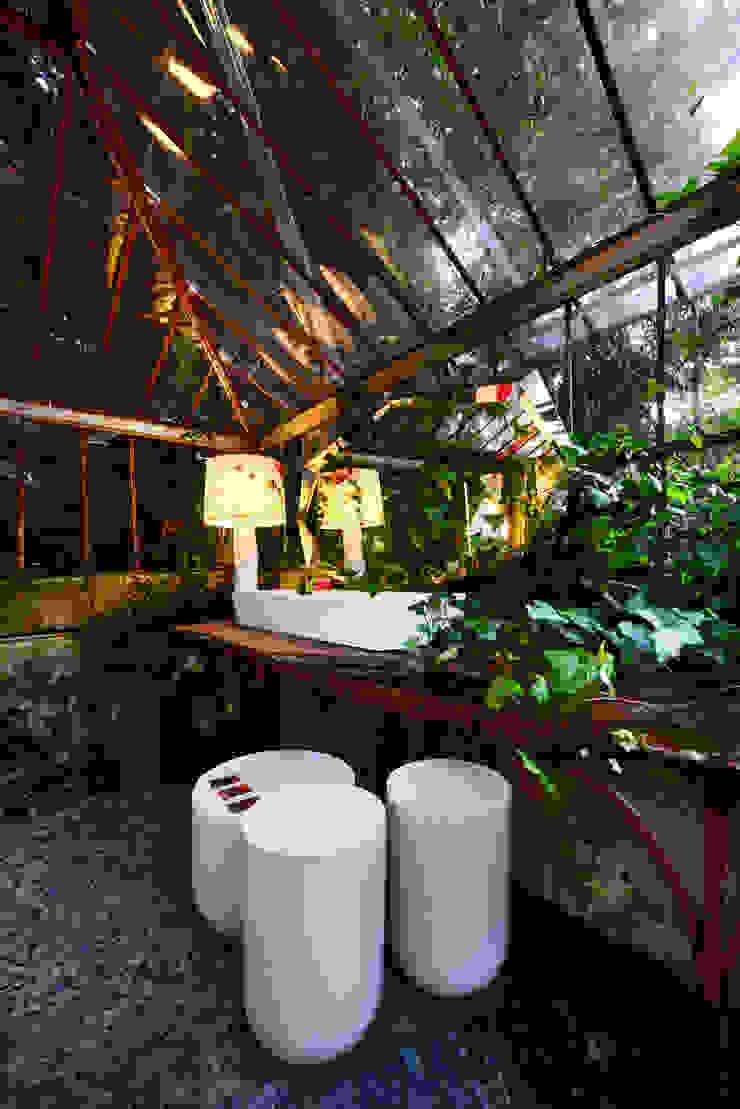 Casa Porto:  tropical por ACTUAL SOLUCÕES,Tropical
