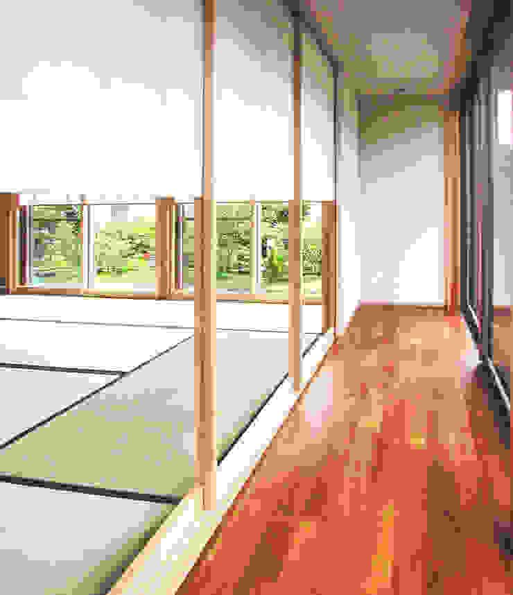 茶室のある家 モダンスタイルの 玄関&廊下&階段 の ユミラ建築設計室 モダン