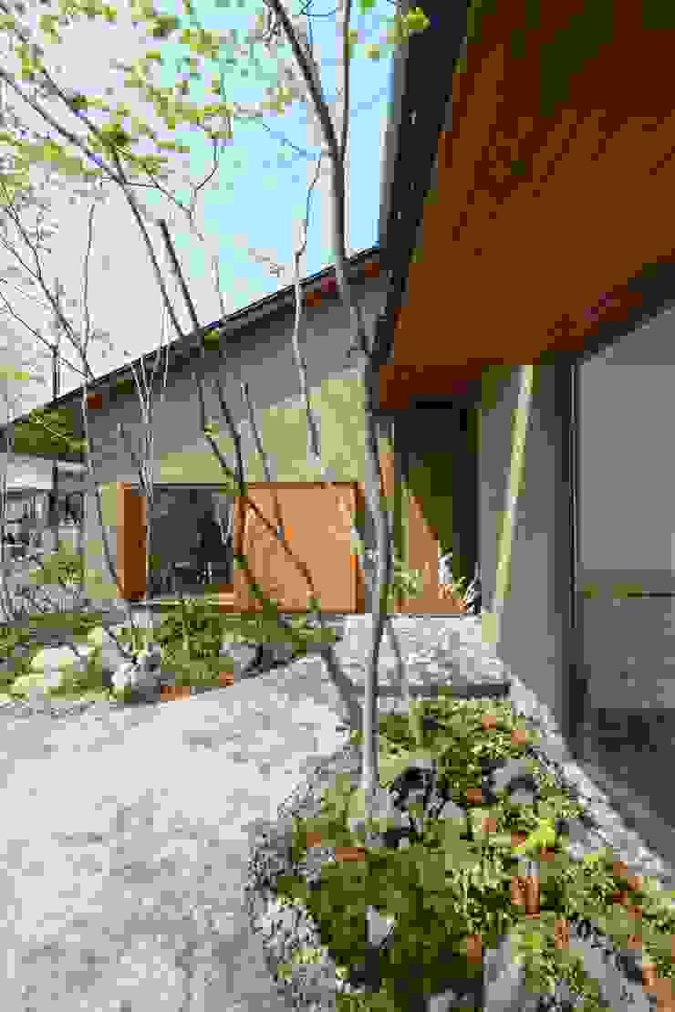 造園 モダンな 家 の バウムスタイルアーキテクト一級建築士事務所 モダン 木 木目調