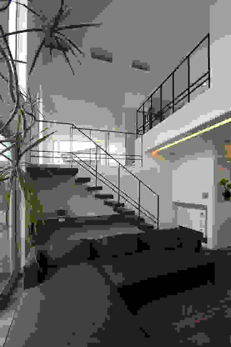 K-house オリジナルデザインの リビング の クコラボ一級建築士事務所 オリジナル
