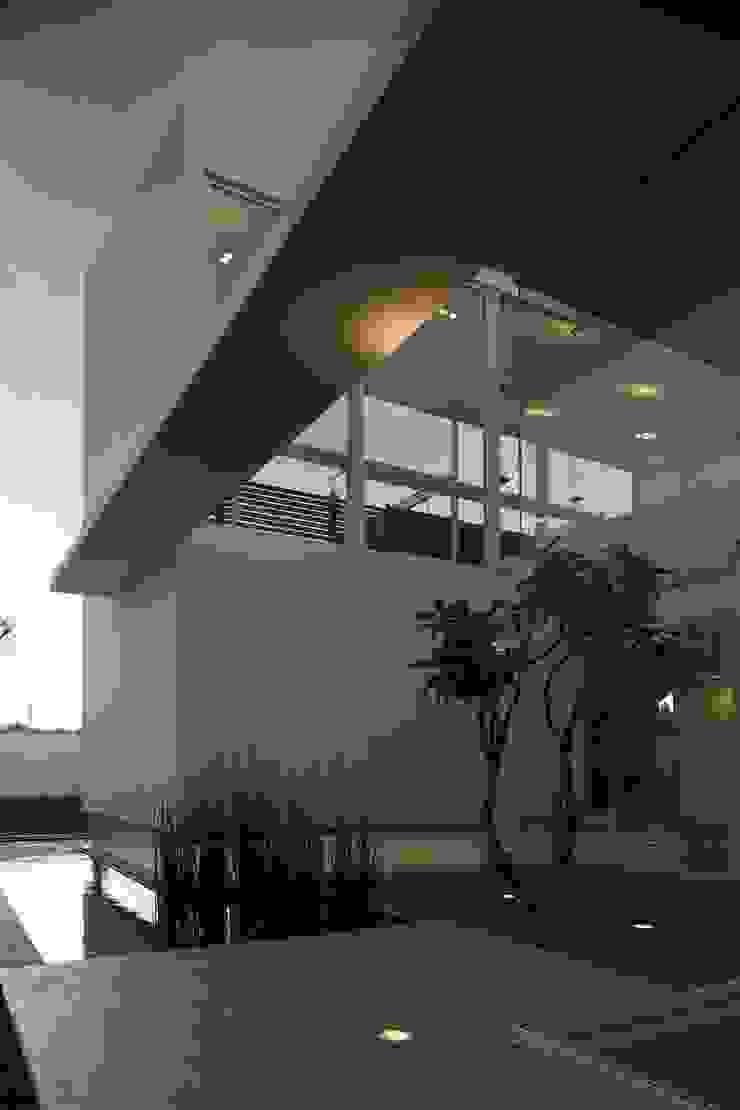 Casa Quince Comedores minimalistas de Echauri Morales Arquitectos Minimalista