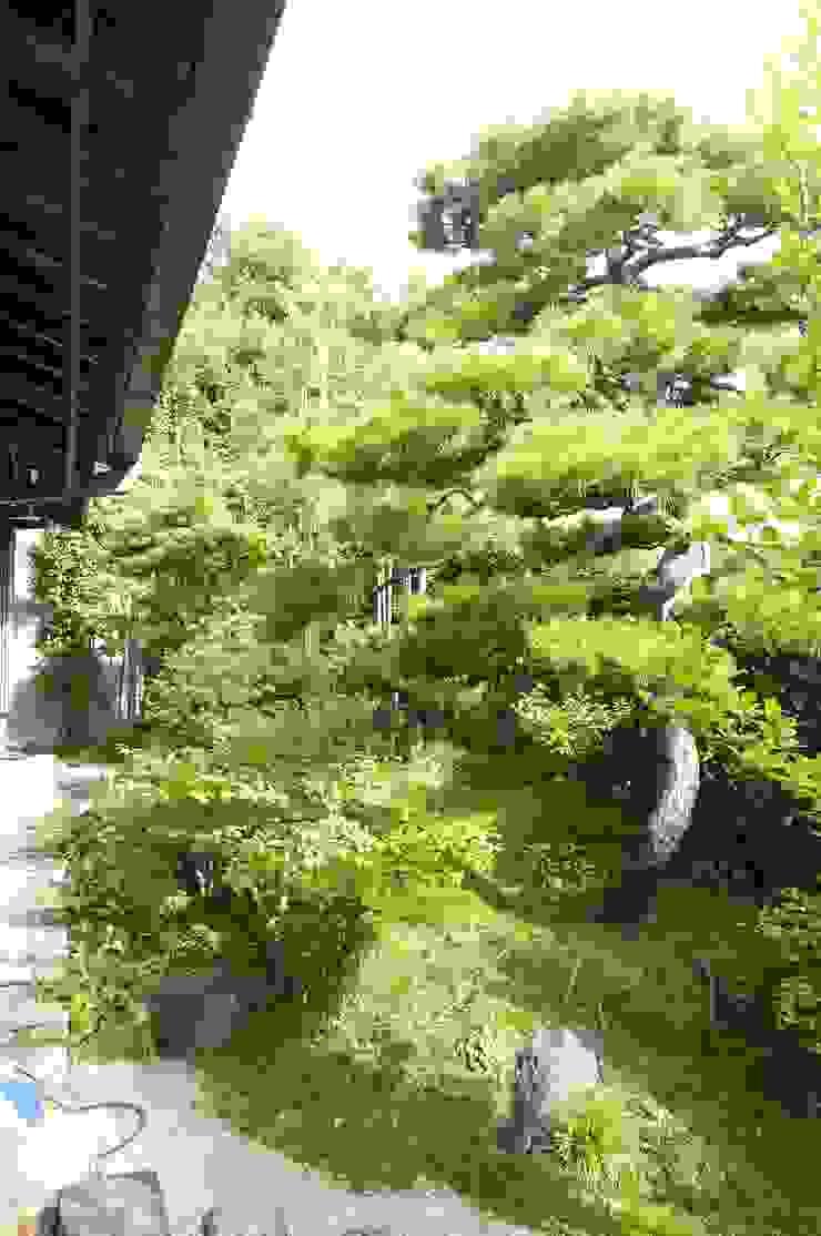 Sakurayama-Architect-Design Asian style garden