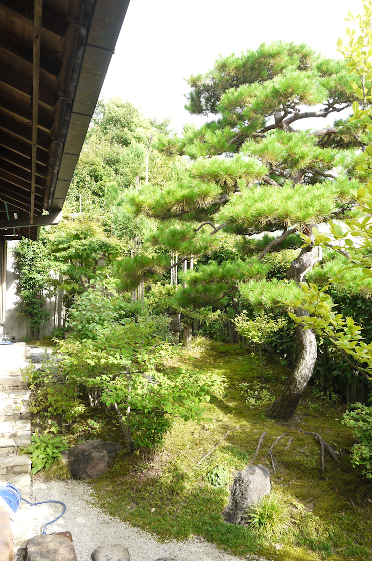 Sakurayama-Architect-Design Jardines de estilo asiático