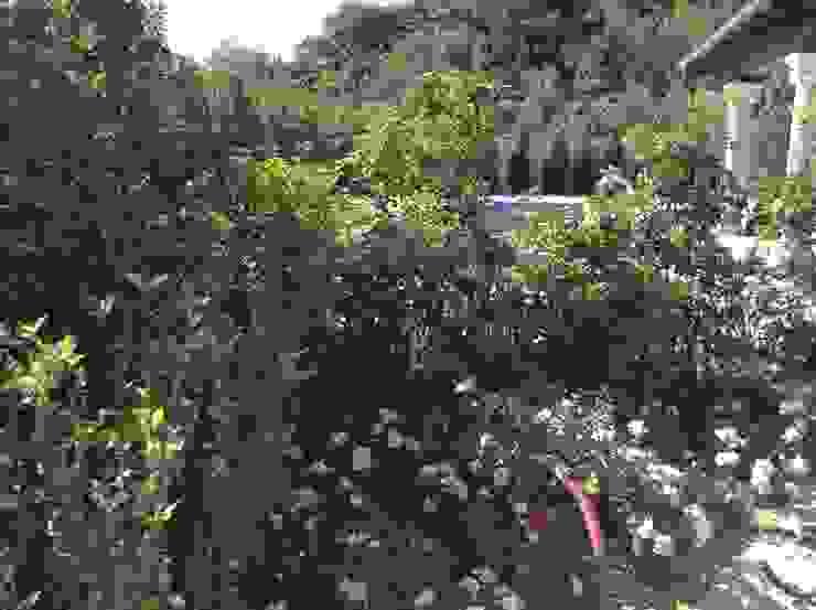 par Febo Garden landscape designers