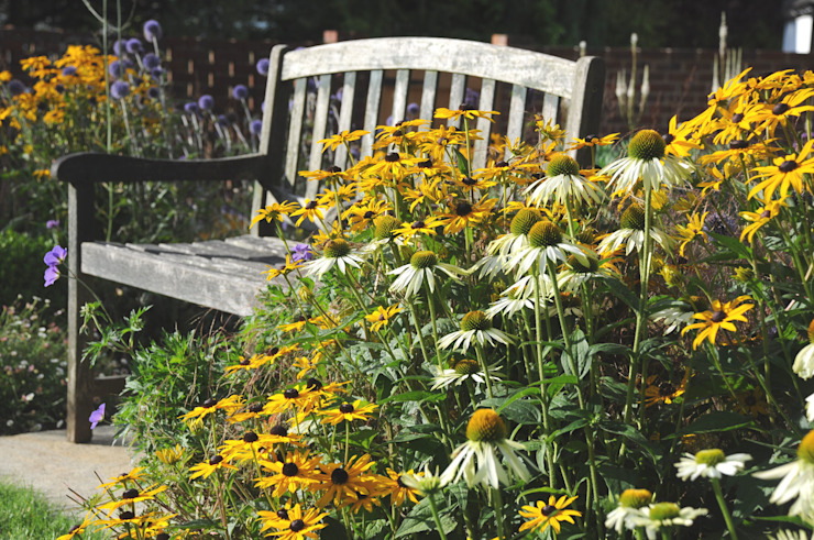 Surrey bee garden Modern garden by Arthur Road Landscapes Modern