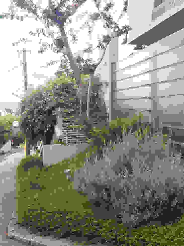 百日紅の家 モダンな庭 の (有)ハートランド モダン