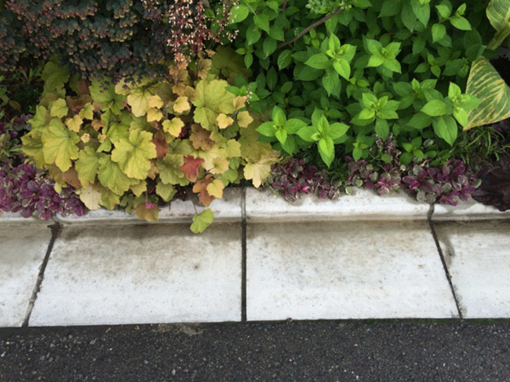 MiZ モダンな庭 の (有)ハートランド モダン