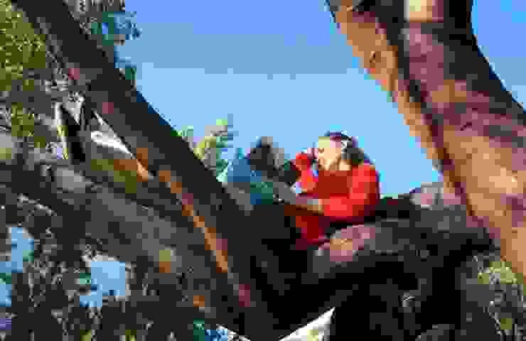 triipi®, almofada para apoiar livros/ipad por triipi® everything pillow Escandinavo