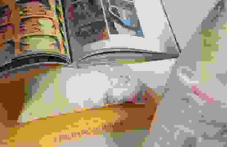 triipi®, almofada para apoiar livros/ipad por triipi® everything pillow Clássico