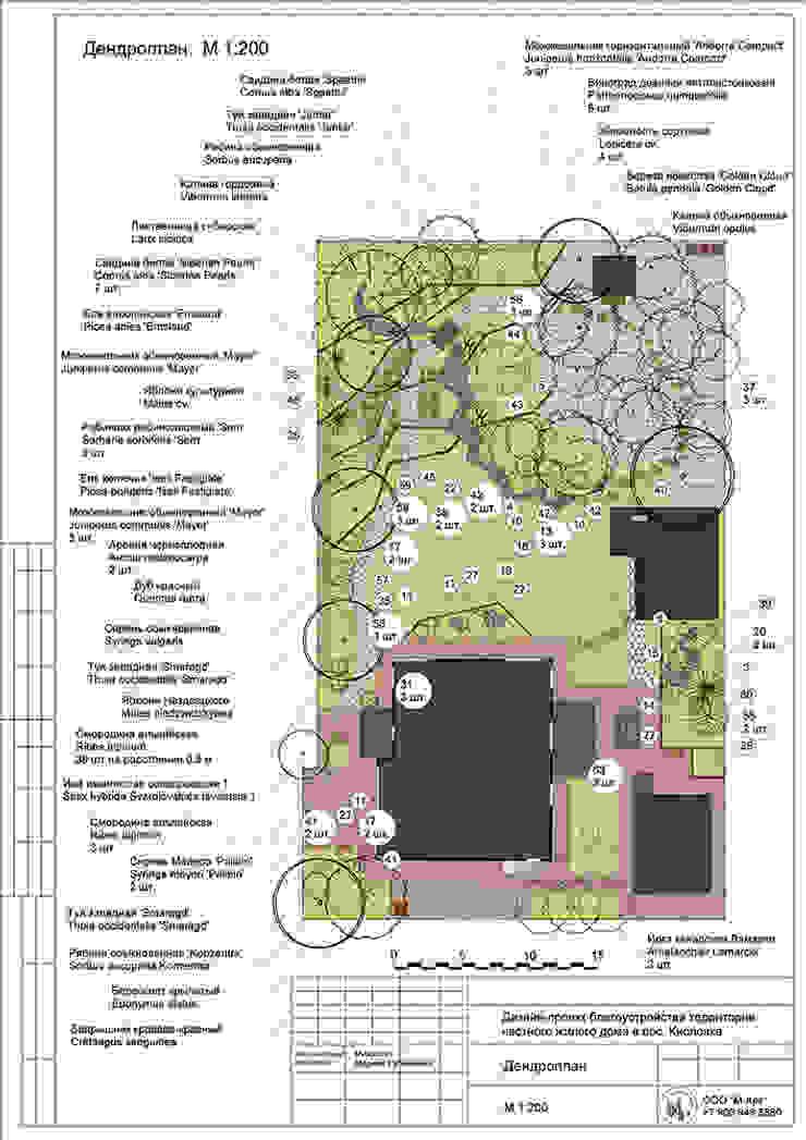 Дандрологический план Сад в скандинавском стиле от Марина Михайлик Скандинавский