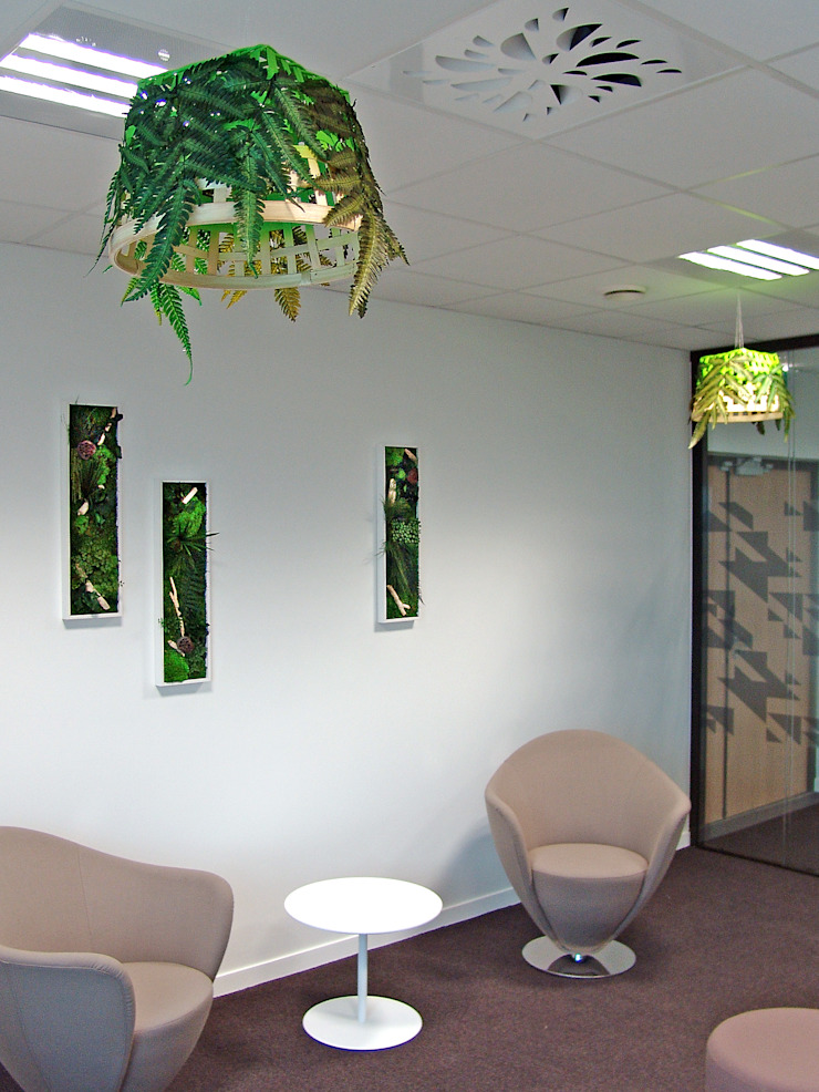 Adventive Interior landscaping Green
