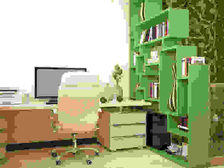 Восточные Сказки Рабочий кабинет в стиле модерн от Tatiana Zaitseva Design Studio Модерн