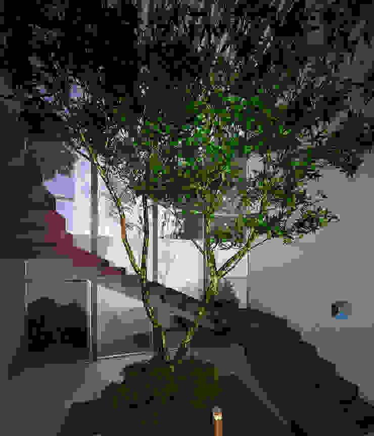 Proyecto Arquitectónico <q> Casa XC03</q> Pasillos, vestíbulos y escaleras modernos de PORTO Arquitectura + Diseño de Interiores Moderno
