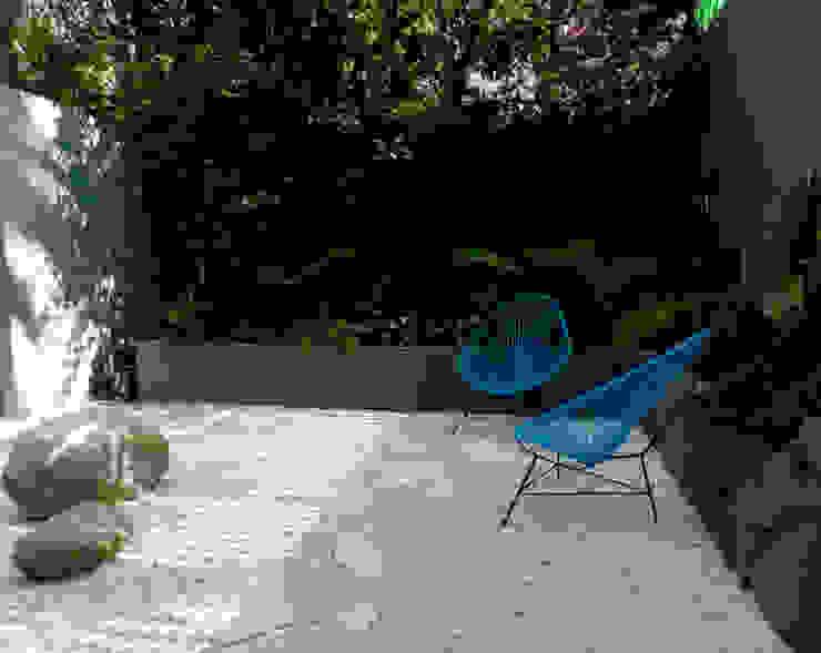 Proyecto PROTASIO TAGLE Jardines modernos de Paisaje Radical Moderno