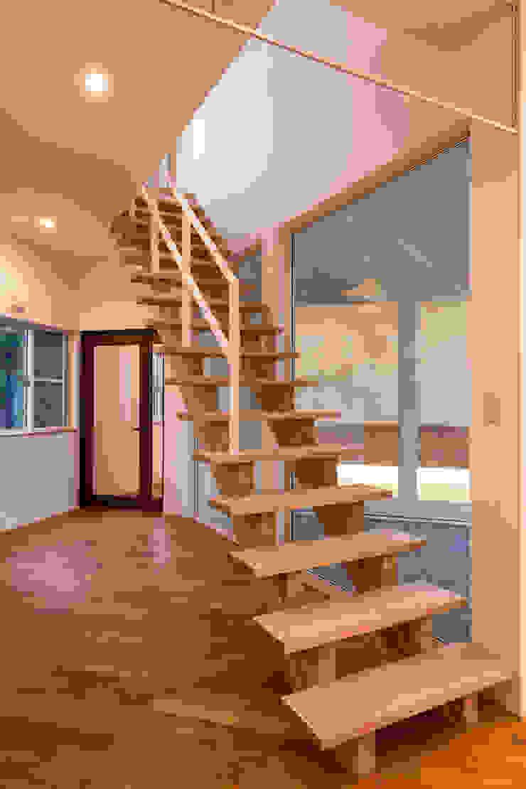 松本の家。 モダンスタイルの 玄関&廊下&階段 の 株式会社ルティロワ 一級建築士事務所 モダン