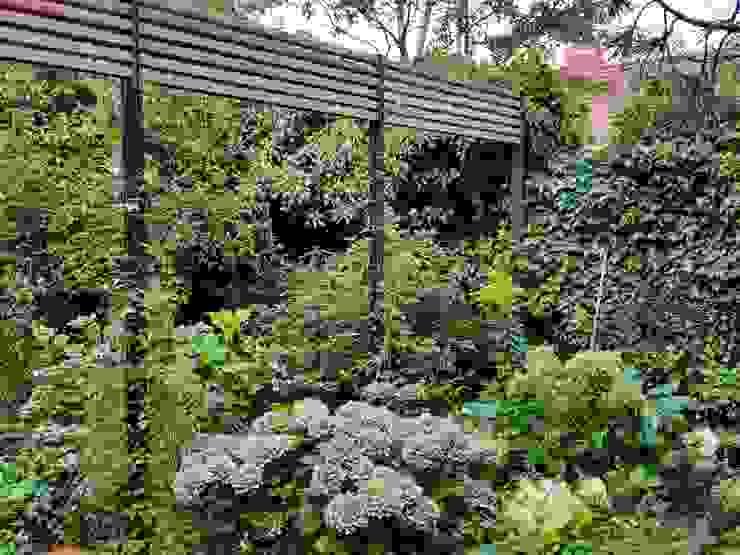 Pergola Irene Alberts Landschaftsarchitektin Moderner Garten