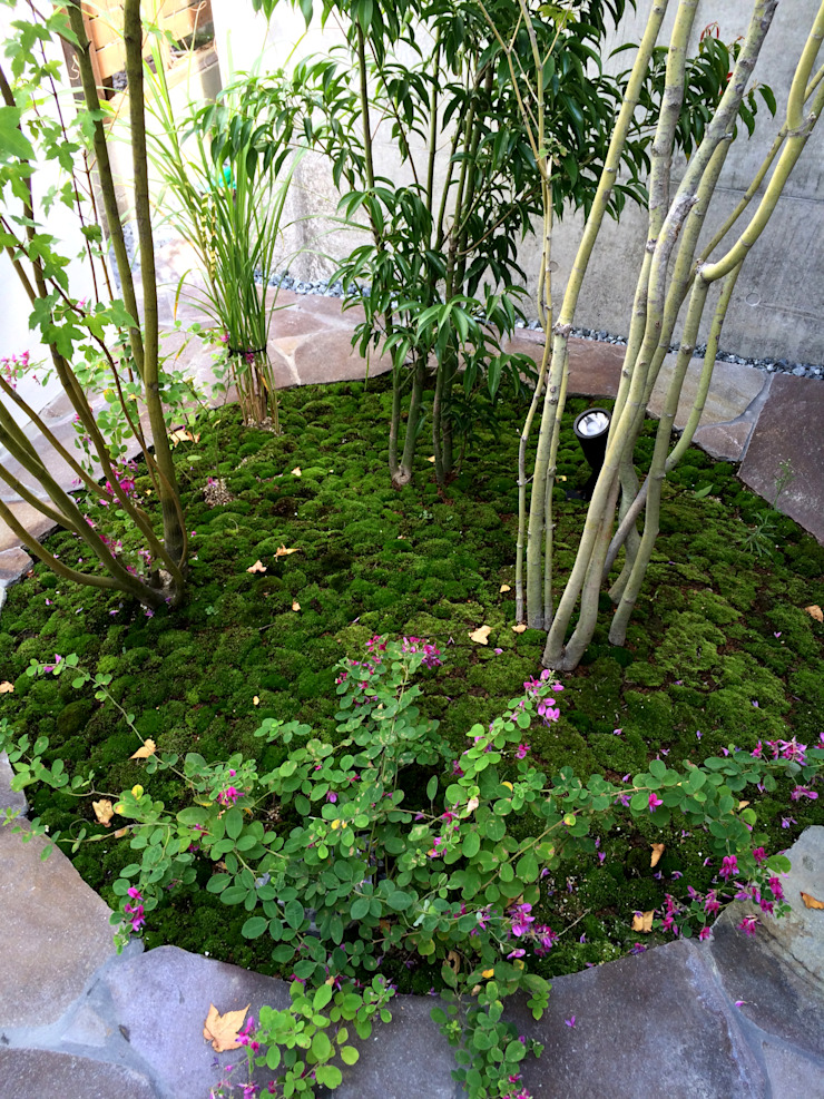 Sakurayama-Architect-Design Asian style garden Green