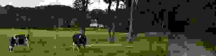 Villa Galder Landelijke tuinen van STROOM architecten Landelijk