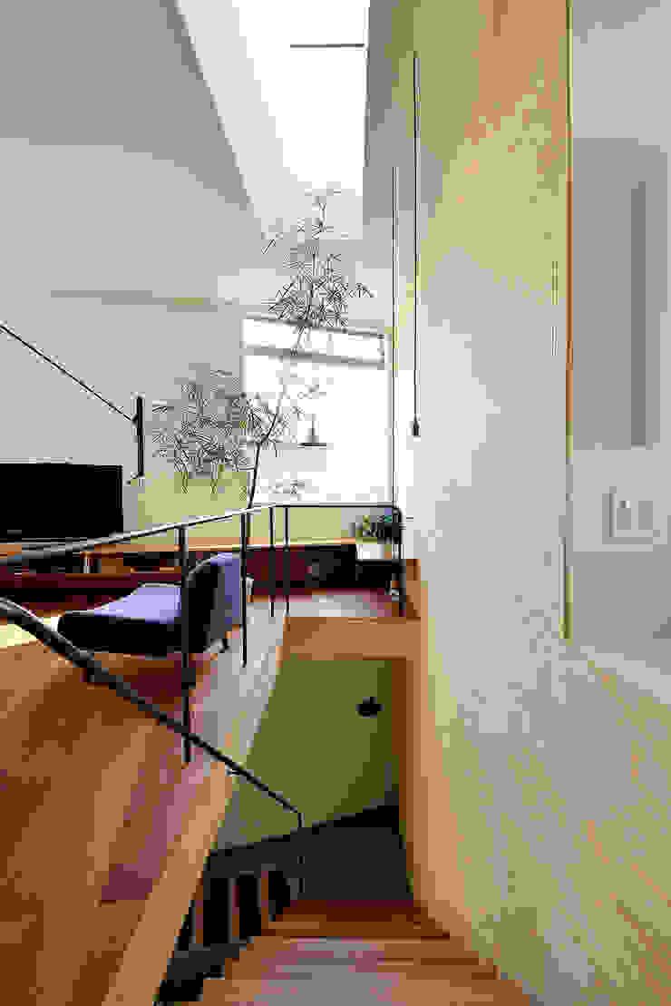 HOUSE S モダンスタイルの 玄関&廊下&階段 の アーキライン一級建築士事務所 モダン